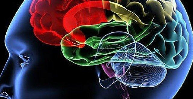 brain meditation