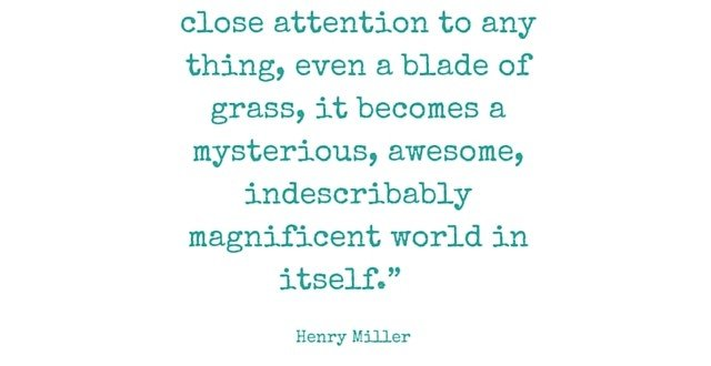 Inspiring Quote Quiet Mind Instagram Henry Miller