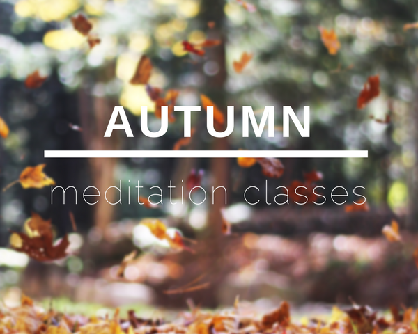 Autumn Meditation Classes