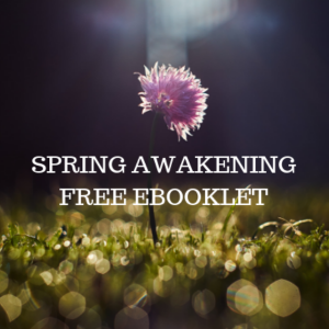 free ebook spring meditation