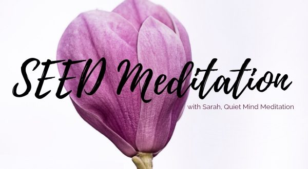 SEED Meditation course