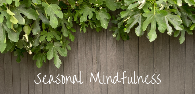 Seasonal Mindfulness